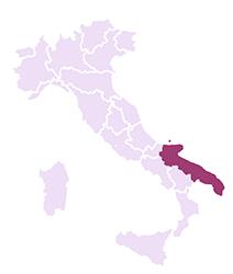 Vini della Puglia